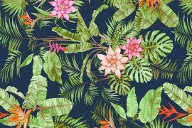 selection maillots de bain motifs tropicaux
