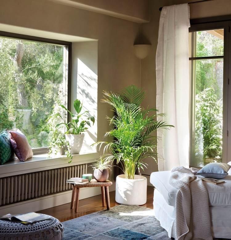 deco-salon-plantes-vertes