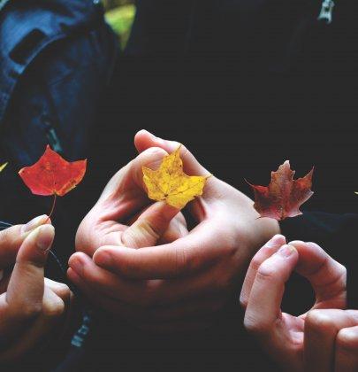 DIY Automne avec les enfants : Pour profiter de cette belle saison en restant au chaud !