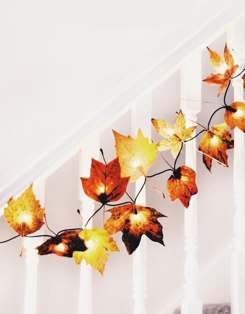 activite automne